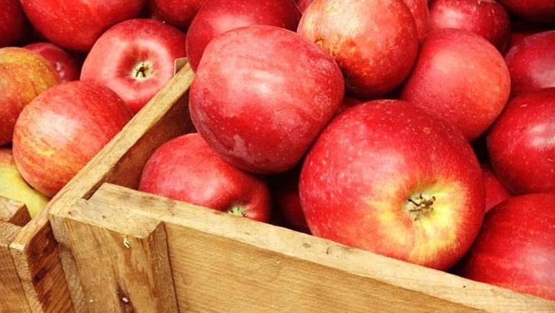 Smaken av norske epler!